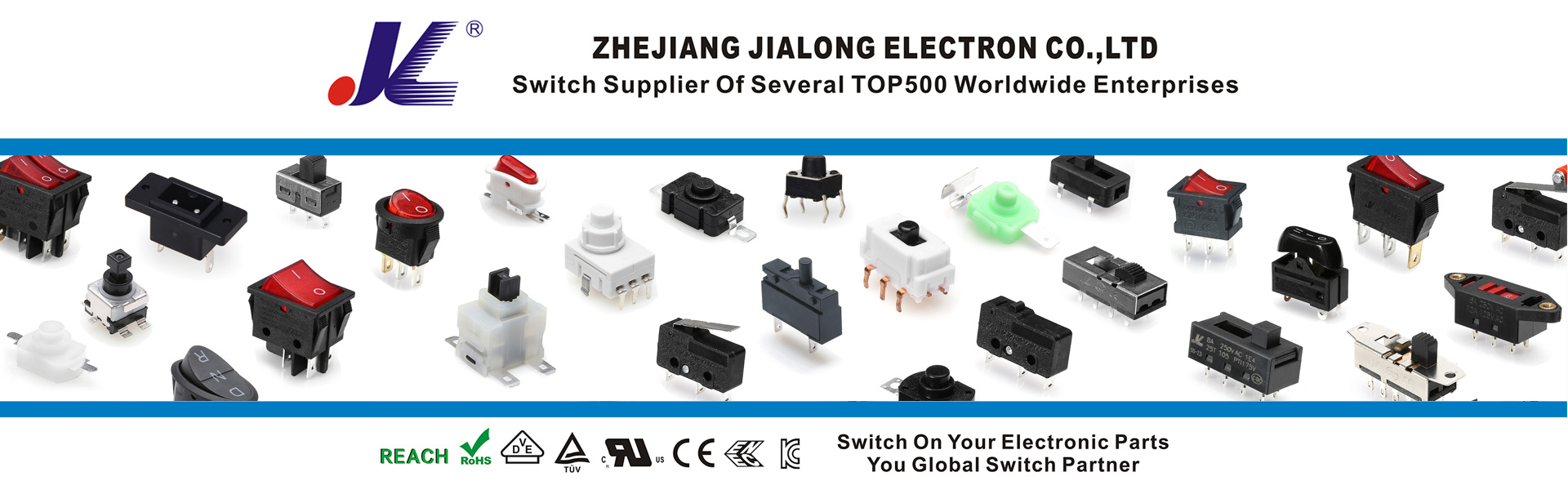 switch supplier of several Top500 worldwide enterprises